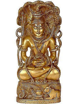 Shiva in Dhyana Mudra