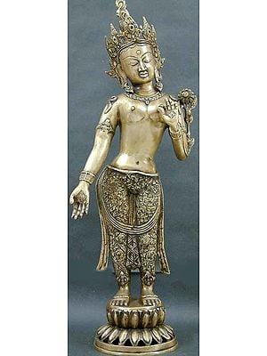 Tibetan Buddhist Goddess Large Size Standing Tara