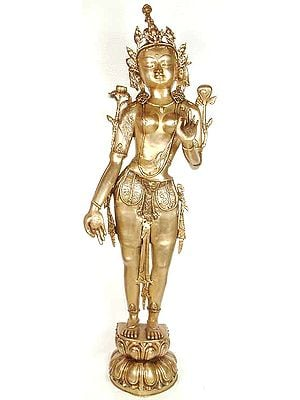 Large Size The Goddess Tara (Tibetan Buddhist Deity)