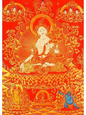 Sapta-lochani White Tara (Tibetan Buddhist Deity Seven-eyed Tara)