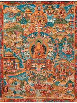 Fine Quality Life of Buddha ( Tibetan Buddhist)
