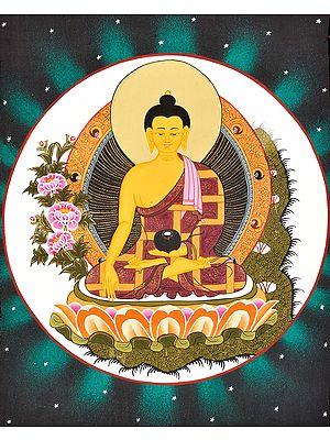 Shakyamuni As Bhaishajyaguru (The Medicine Buddha) -Tibetan Buddhist