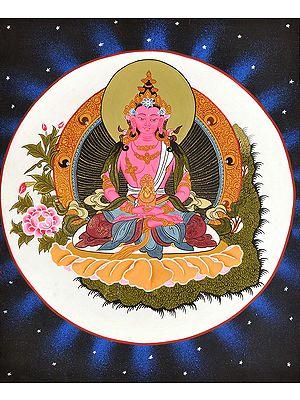 Tibetan Buddhist Deity Amitabha as Amitayus Buddha