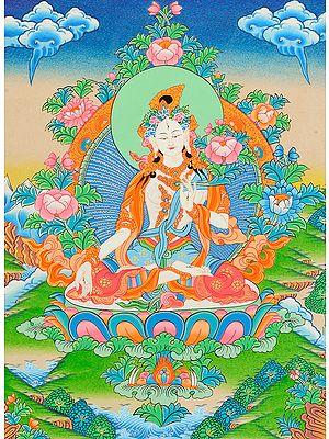 Tibetan Buddhist Goddess White Tara Who Blesses Long Life to Her Devotees