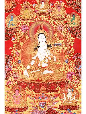 Devi White Tara, The Princess-Bodhisattva
