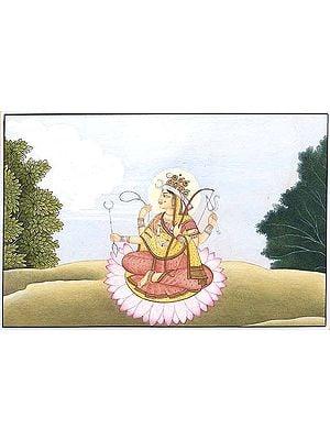 Devi as Shiva