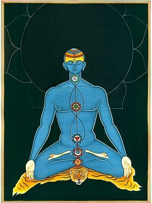 Kundalini Yoga Chakras in Human Body