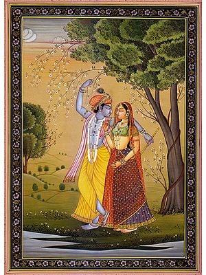 Radha Offering Betel-leaf to Krishna