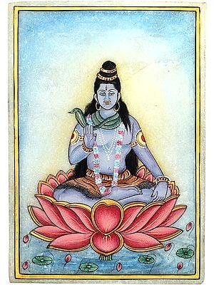 Lord Shiva on Lotus