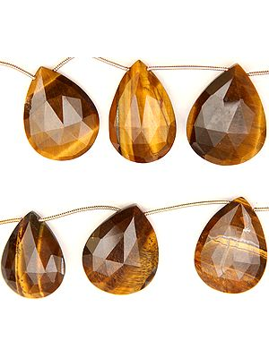 Faceted Tiger Eye Briolette