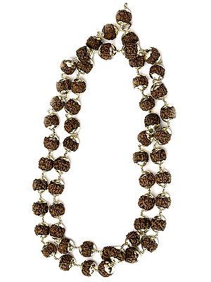 Large Rudraksha Mala of 54 Beads for Chanting