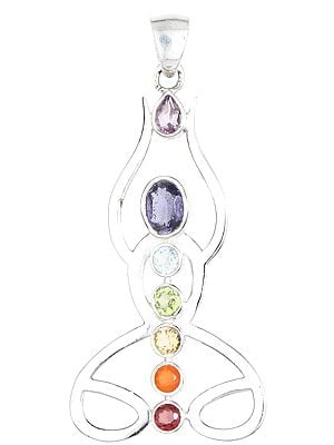 Faceted Multi-Gemstones Chakra Human Body Pendant