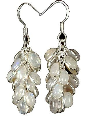 Rainbow Moonstone Bunch Earrings