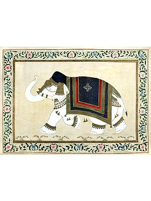Royal Elephant Framed in a Floral Border (Old Looking Painting)