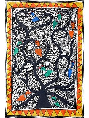 Birds on Tree of Life