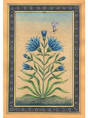 A Floral Delight