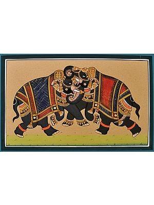 The Elephant Combat