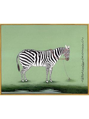 The Likeness of a Zebra