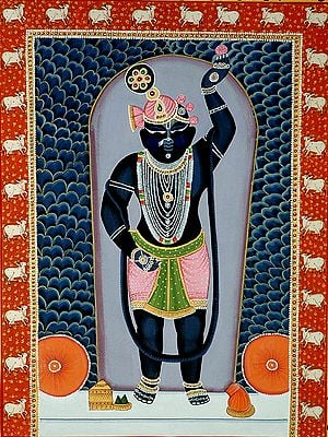 Adorable Krishna as Shrinathji