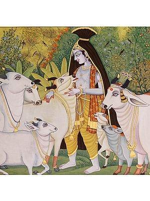 Krishna the Enchanter