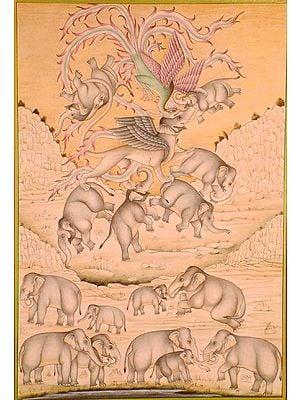Fantastic Elephants