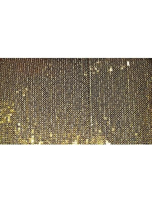 Densely Sequined Fabric