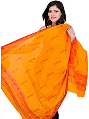 Jai Shri Rama Sanatana Dharma Prayer Shawl