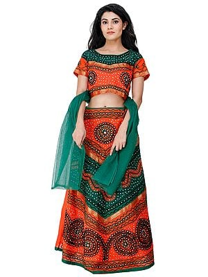 Lehenga Choli from Rajasthan with Thread Embroidery and Large Sequins