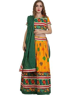 Apricot and Green Lehenga Choli from Jodhpur with Floral-Embroidery and Printed Large Bootis