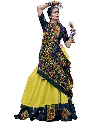 Celery and Black Garba Lehenga Choli from Gujarat with Floral Hand-Embroidery and Mirrors