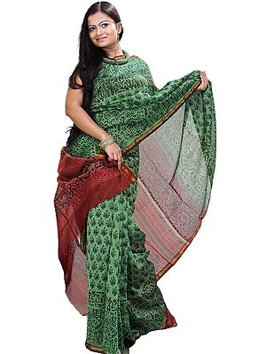 Green-Briar Chanderi Sari with Kalamkari Printed Motifs