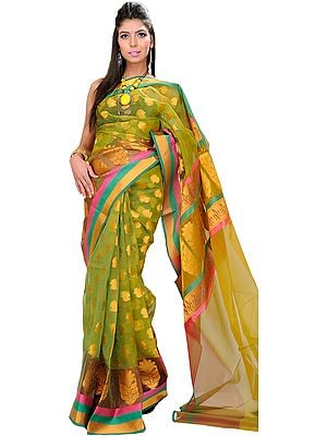 Herbal-Garden Banarasi Sari with Woven Bootis and Tri-Colored Border