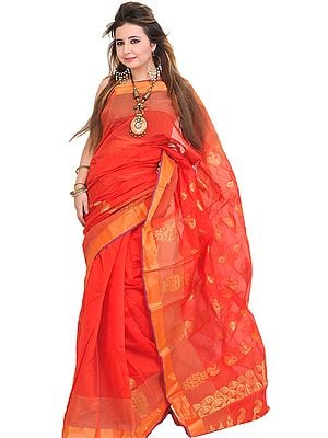 Hibiscus-Red Sari from Banaras with Zari-Woven Paisleys and Striped Border