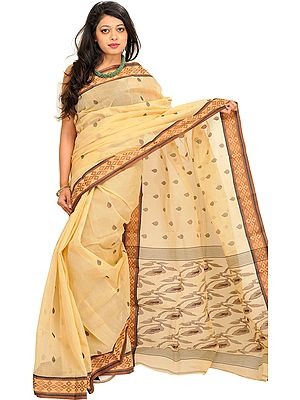 Italian-Straw Sari from Bengal with Woven Border and Bootis All-Over