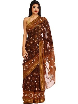 Brown and Chocolate Bandhani Tie-Dye Sari from Rajasthan with Woven Border