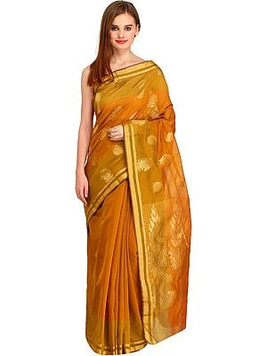 Buckthorn-Brown Chanderi Sari With Zari-Woven Leaves on Pallu and Striped Border