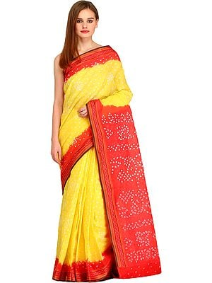 Lemon and Red Bandhani Tie-Dye Sari from Jodhpur with Woven Border