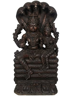 Lord Vishnu with Lakshmi Seated on Sheshanaga