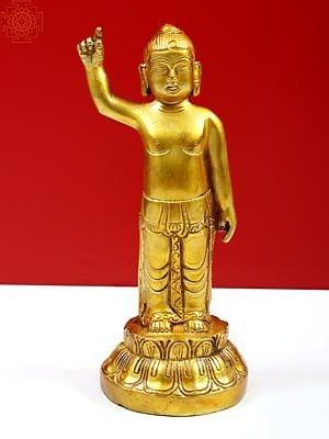 Baby Buddha - Tibetan Buddhist