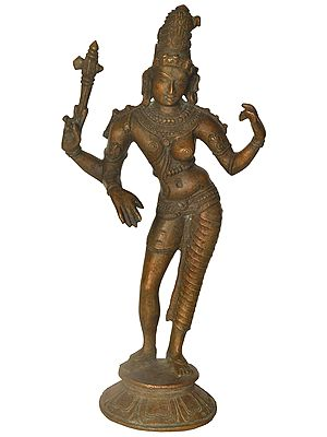 The Tall And Slender Ardhanarishvara
