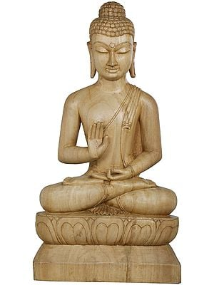 The Placid Gautama Buddha
