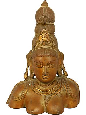 Goddess Parvati Bust