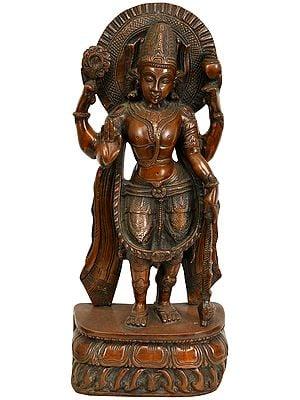 Standing Four Armed Vishnu