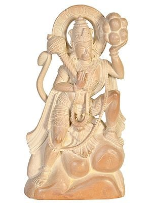 Lord Hanuman Carrying Mount of Sanjivani Herbs