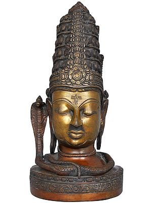 Shiva-head