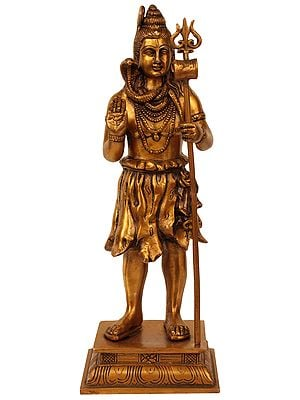 Lord Shiva: The Wanderer