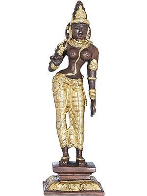 Goddess Parvati in the Triple Bent Posture