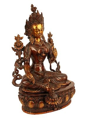 Female Buddhist Deity Tara