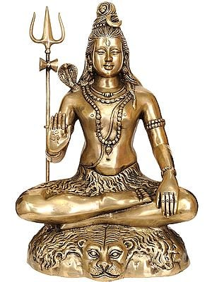 Shiva Engaged in Penance: Yoga-Dakshina-Murti Shiva