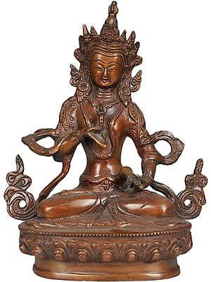 Bodhisattva Vajrasana In Padmasana